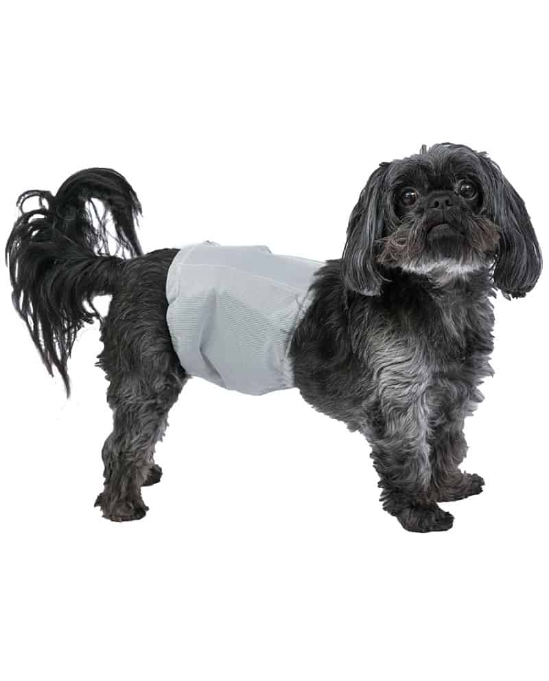 small reusable washable male dog wrap diaper poochpad