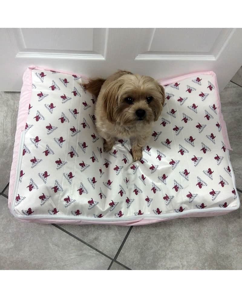 poochpad ultra dry dog bed