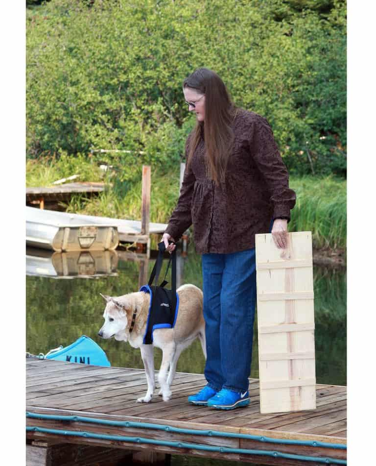 walkabout front support dog harness sling