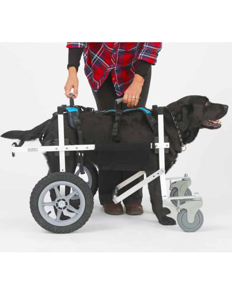 help em up harness with k9 cart dog wheelchair