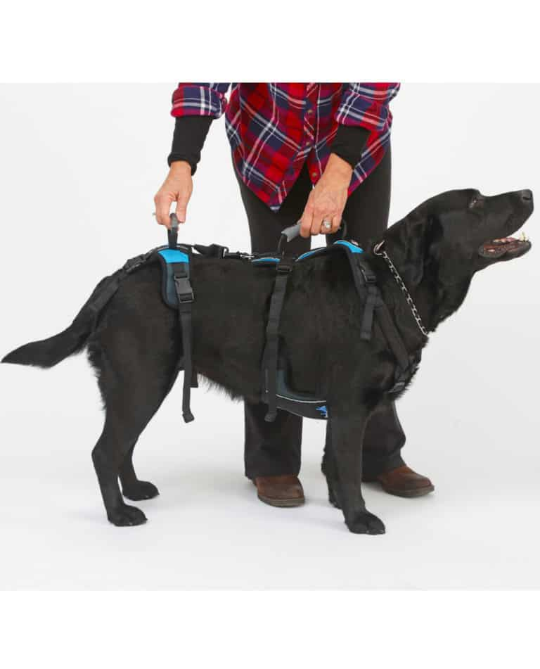help em up large dog harness