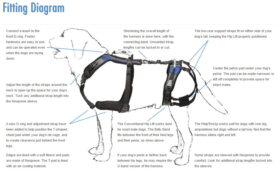 Help Em Up dog harness Fitting Diagram
