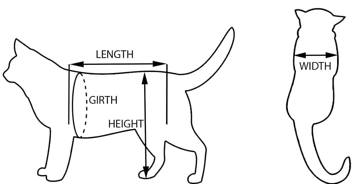 Cat Wheelchair Measurements